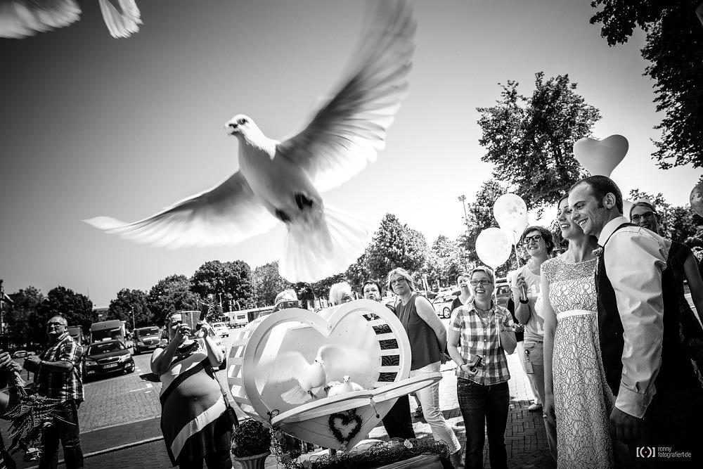 Foto Tauben vor dem Standesamt Oldenburg von Ronny Walter