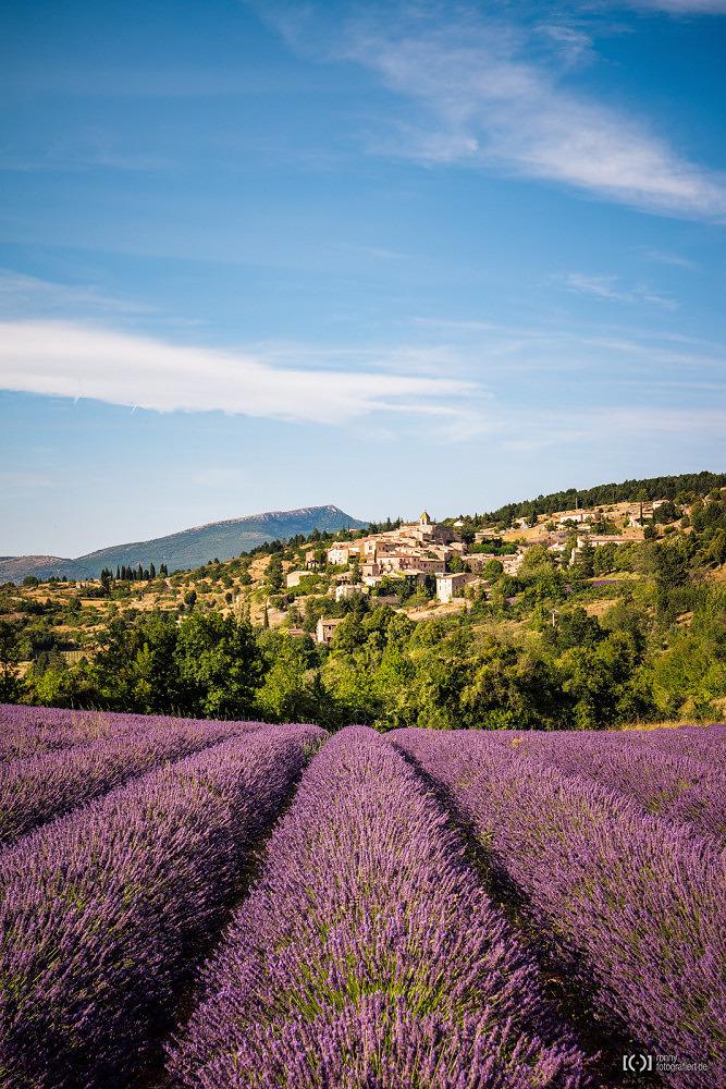 Foto Blick über Lavendelfelder Richtung Aurel von Ronny Walter