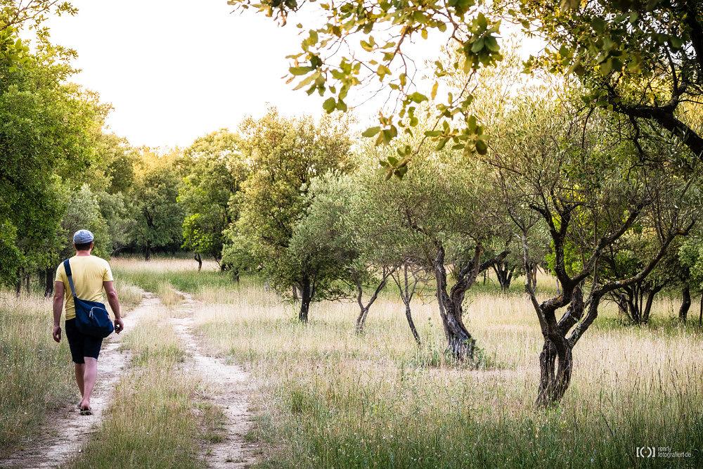 Foto Auf dem Heimweg von der Pont du Gard von Bärbel Stork